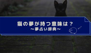 夢占い|猫の夢は女性的なトラブルの前兆!猫が死ぬ・噛まれる夢はやばい!?