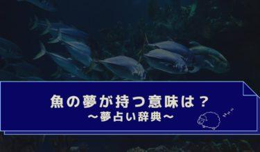 夢占い|魚の夢は吉夢?食べる・捕まえる・海や川で泳ぐ魚の夢の意味は?